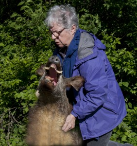 Linda convinces the boar to leave