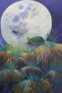Moth, Turtle, Moon Linda Curtis